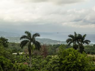 Two bedroom in the hills stunning view of coast - Tower Isle vacation rentals