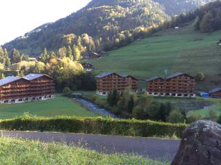 Comfortable studio in thermal parc,/natural spa - Val D'illiez vacation rentals