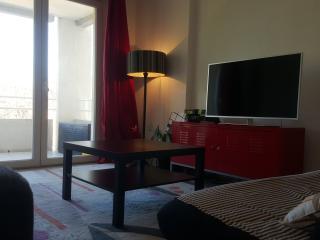 Grand appartement avec terrasse - Montpellier vacation rentals