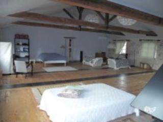 Loft en plein centre historique de Lavaur - Lavaur vacation rentals