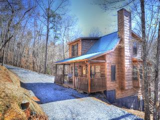 Bucky And Doe Doe's Place * HOT TUB* Resort - Ellijay vacation rentals