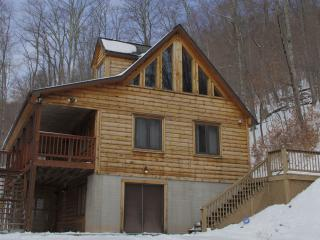 Woodland Gem--Private cabin-Hot Tub, Wifi, Jacuzzi - Snowshoe vacation rentals