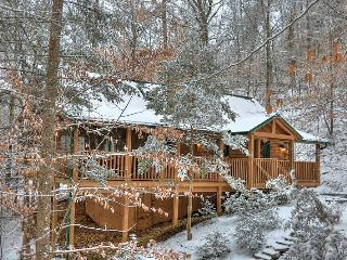 WOODLAND OASIS--Wonderful Winter Hideaway! - Pigeon Forge vacation rentals
