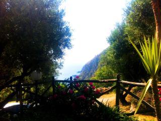 Bright 2 bedroom Villa in Joppolo with Patio - Joppolo vacation rentals