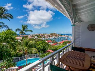 Nice 1 bedroom Condo in Saint Barthelemy - Saint Barthelemy vacation rentals