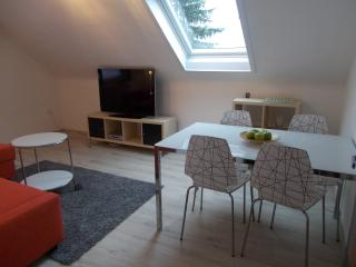 Nice Condo with Internet Access and Dishwasher - Aalen vacation rentals