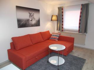 Apartment Seven Ducks - Aalen vacation rentals