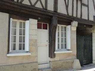 next to center and to Loire river, quiet, yard 1 to 6 p - Tours vacation rentals