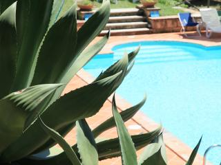 Agriturismo with swimming pool - Amelia vacation rentals