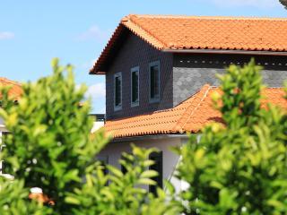 Casa da Vigia - Historic Apartment - Viseu vacation rentals
