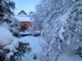Chalet  in the heart of the Cairngorm Nation Park. - Kingussie vacation rentals