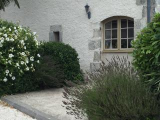 2 Bed French Farmhouse. 20 % Discount - Grand Brassac vacation rentals