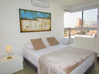 Cozy 2 bedroom Barranquilla Apartment with Internet Access - Barranquilla vacation rentals