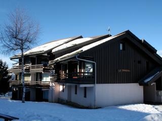 Duplex 40 m2 pour 6 personnes Paridiski - Montalbert vacation rentals