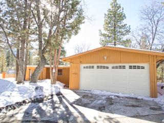 Moonridge Area-view of slopes-WALK to ski resort - Big Bear Lake vacation rentals