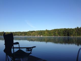 picturesque lakefront cabin - Northwood vacation rentals