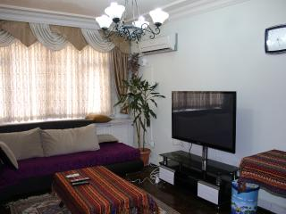 Blue Mosq- 3BR+ HallRoom+ 2WC+ Easy Access - Istanbul vacation rentals