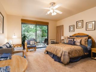 EASTER SPECIAL - Great Studio Available from April 12 - 17 $115/night ++ - Kihei vacation rentals