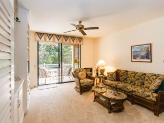 Beautiful Condo in Wailea - June nights available - Wailea vacation rentals