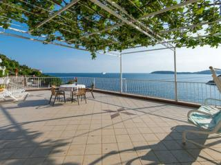Apartments Matea - One-Bedroom Apartment with Sea View - Zaton (Dubrovnik) vacation rentals