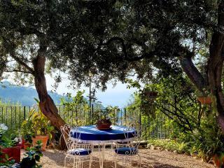 Punta del Capo - Sorrento vacation rentals
