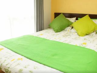 ⑥Next to SHICHIJO St.!/ 10 minutes walk to Kyoto St./ 2ppl/ budget stay! - Kyoto vacation rentals