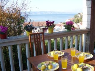 Sea view 2 bed apt 150m from beach - Jelsa vacation rentals