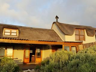 Waterblom, artistic seaview retreat - Pringle Bay vacation rentals