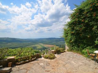 House Istra - Motovun vacation rentals