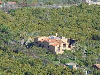 The house in the plain with oranges - Epidavros vacation rentals