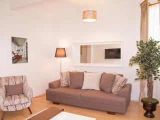 3 BEDROOM APARTMENT - BUDGET AND LUX-GOOD LOCATION - Istanbul vacation rentals