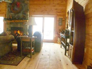 Moose Lodge at Loon Lake - Vermontville vacation rentals