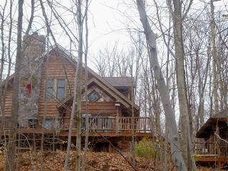Moose Lodge at Loon Lake/Saranac Lake Area - Vermontville vacation rentals