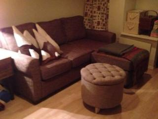 Lovely 1 bedroom Apartment in Toronto - Toronto vacation rentals