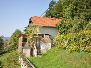 Vineyard cottage - Zidanica Krstinc - Straza vacation rentals