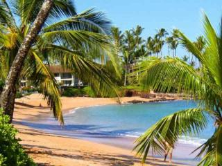 Napili Shores Resort C-120 - Napili-Honokowai vacation rentals