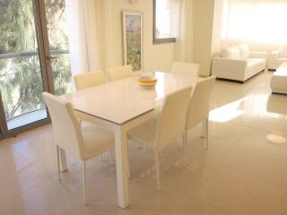 City center  - RAV. KOOK 7/A2 - Jerusalem vacation rentals