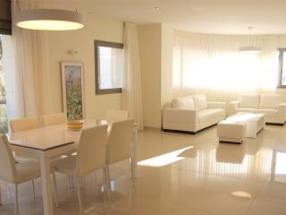 City center  - RAV. KOOK 7/A16 - Jerusalem vacation rentals