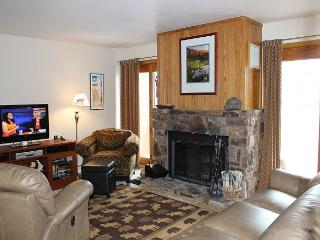 BV104AA 1st floor Cute Condo with Elevator, Wifi, Fireplace, Clubhouse - Silverthorne vacation rentals