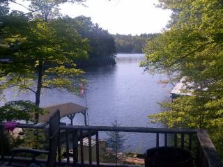 Weslemkoon Lake Cottage for Rent - Gilmour vacation rentals
