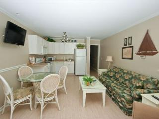Deluxe 2 Bedroom 2 Bathroom Oceanview Condo - Ocean Dunes Villa 104 - Hilton Head vacation rentals