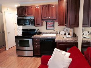 Seaside Villa 349 - 1 Bedroom 1 Bathroom Deluxe oceanside Seaside Villa - Hilton Head vacation rentals
