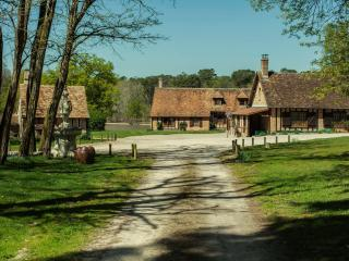 Chambres d'hôtes au coeur de la nature - Chaumont-sur-Tharonne vacation rentals