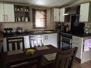 Luxury Caravan at Parkdeans Tummel Valley to rent - Tummel Bridge vacation rentals