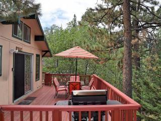 Birdsong Terrace - Big Bear Lake vacation rentals