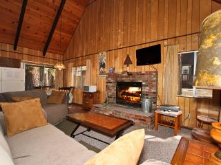Cabin in the Pines - Big Bear Lake vacation rentals