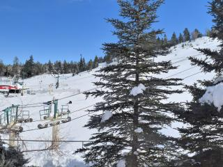 Ski Inn - Big Bear Lake vacation rentals