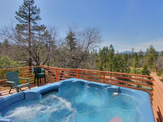 Log Inn - Big Bear Lake vacation rentals