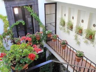 Cozy 2 bedroom House in San Miguel de Allende - San Miguel de Allende vacation rentals