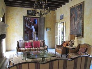 Wonderful House with Internet Access and Satellite Or Cable TV - San Miguel de Allende vacation rentals